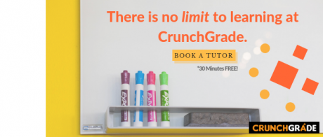 Book an online tutor-Guaranteed ways to improve grades in high school-CrunchGrade